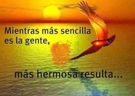Mucho más!!!