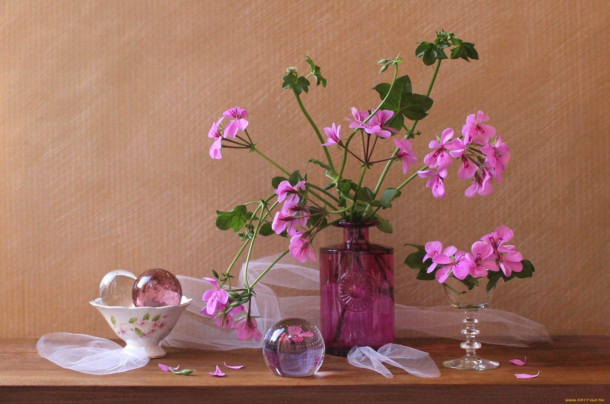 Resultado de imagem para still life wallpapers