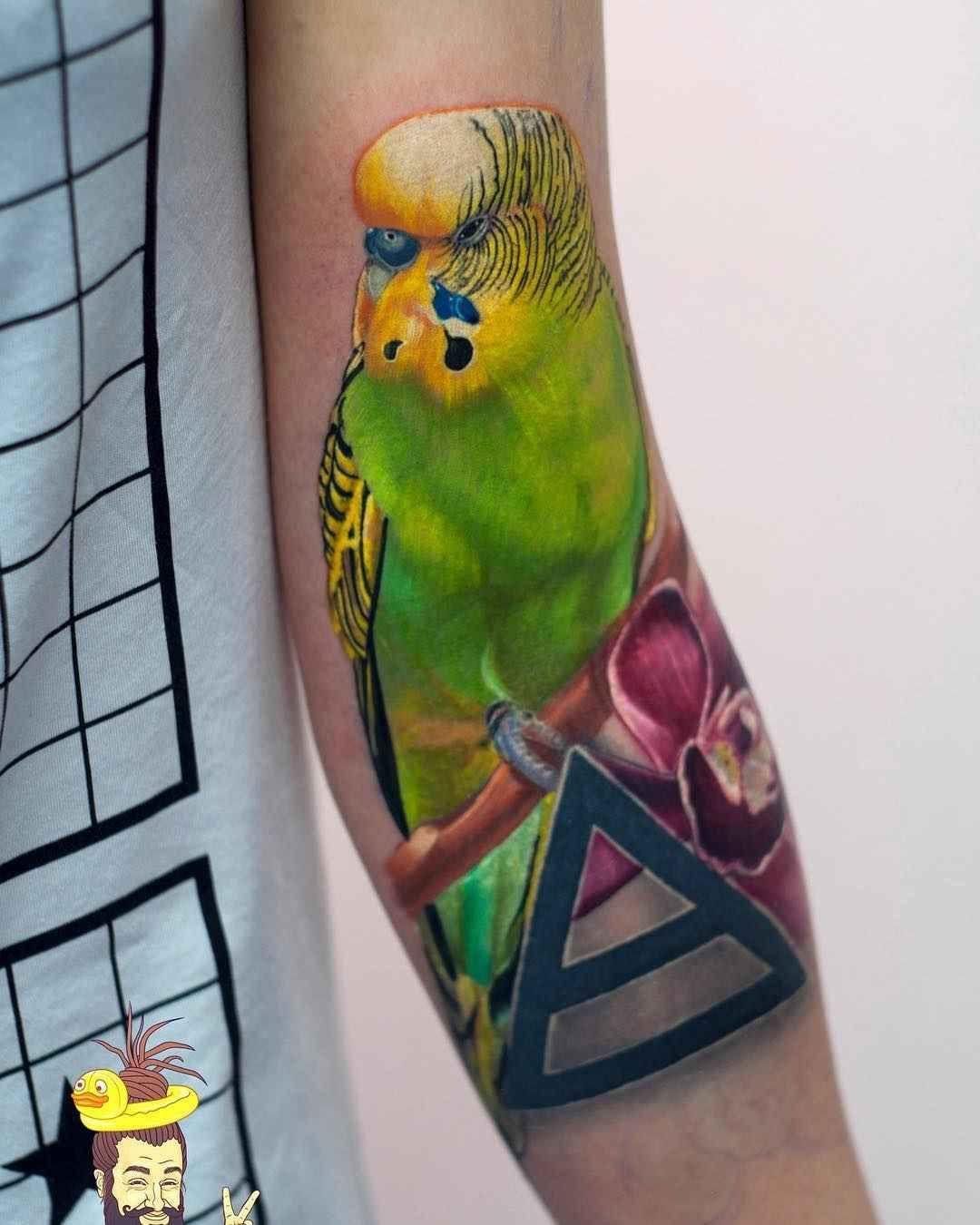 Budgie Tattoo Tattoos, Animal tattoo, Budgies
