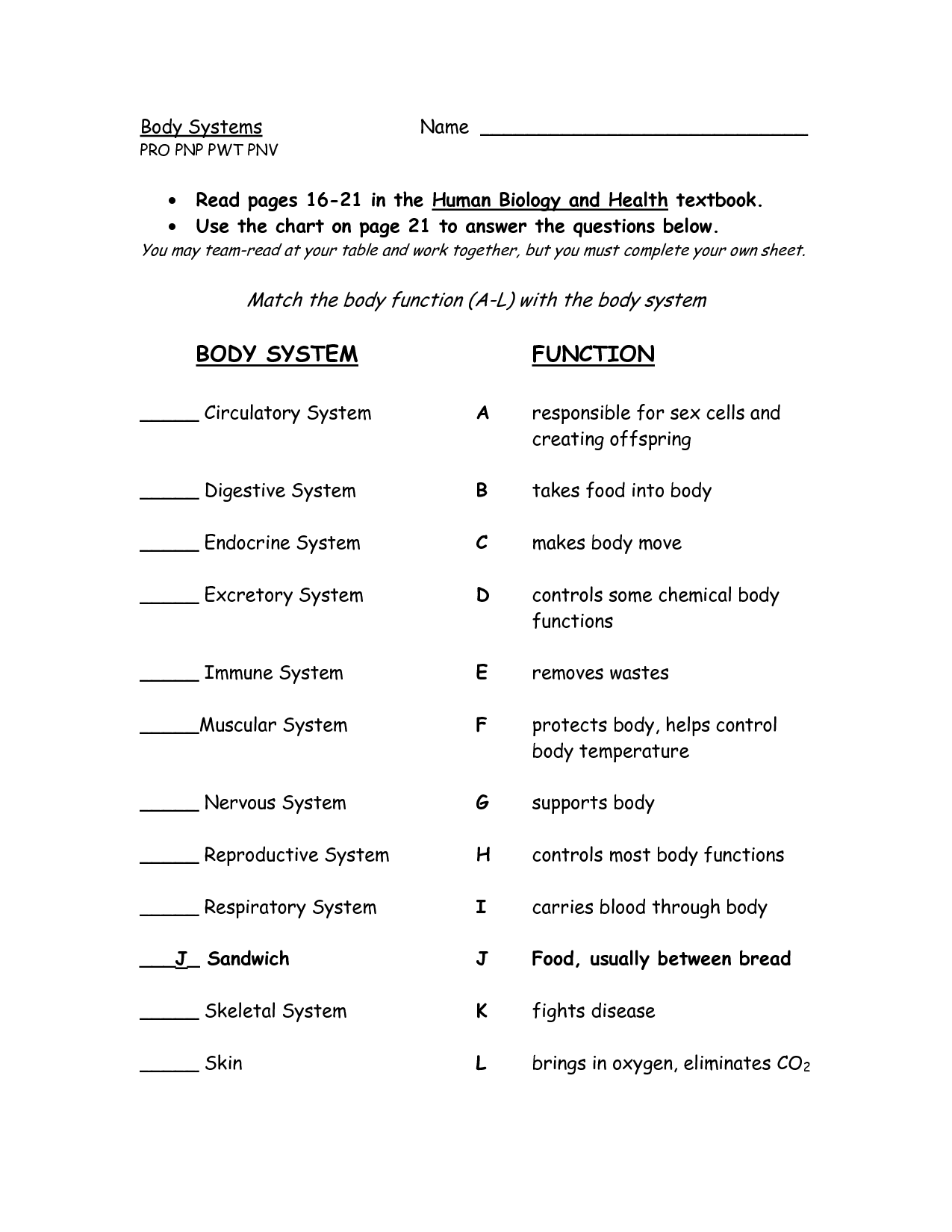 Body Systems And Functions Worksheets Instructional