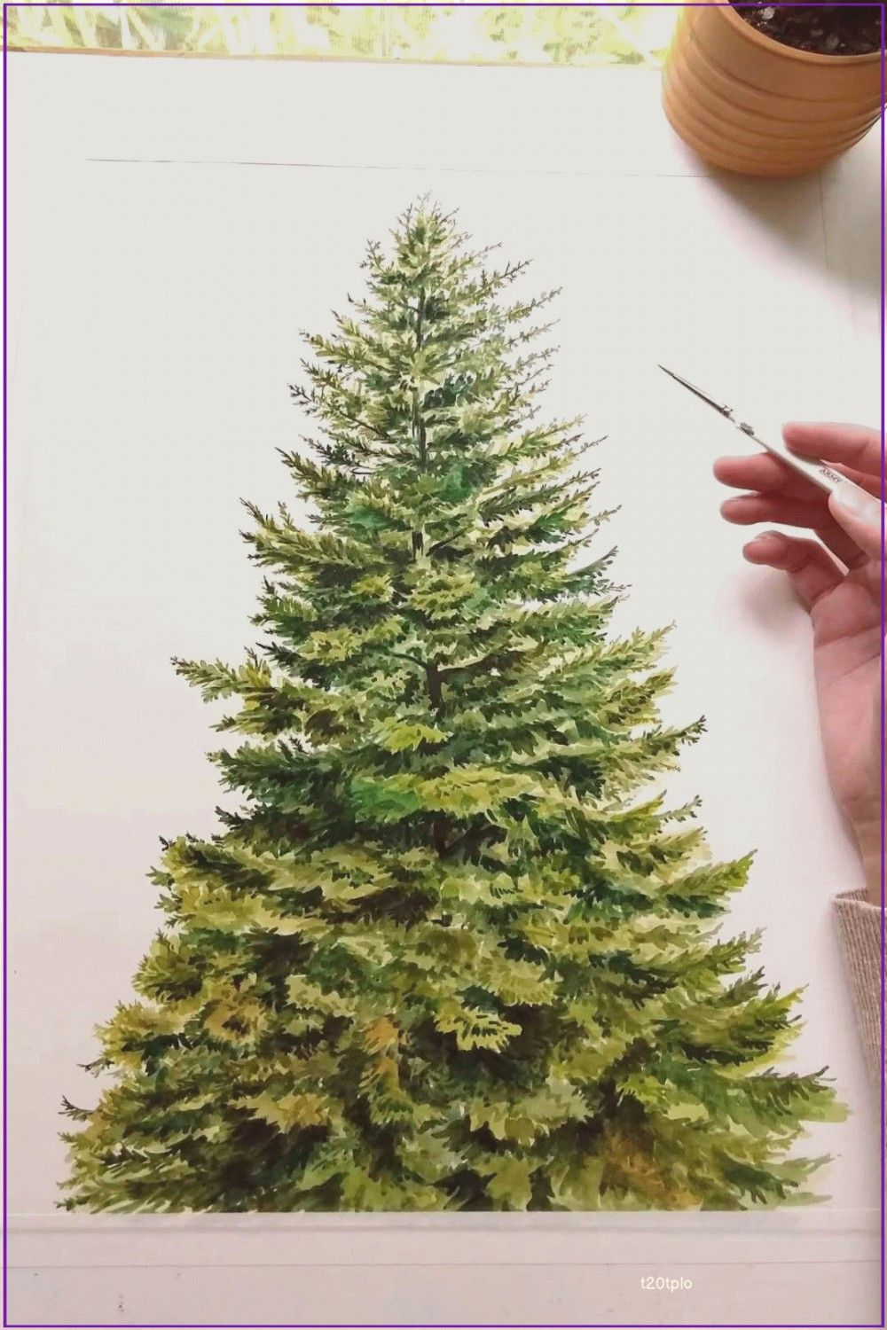 Painting a coniferous tree in watercolor time laps