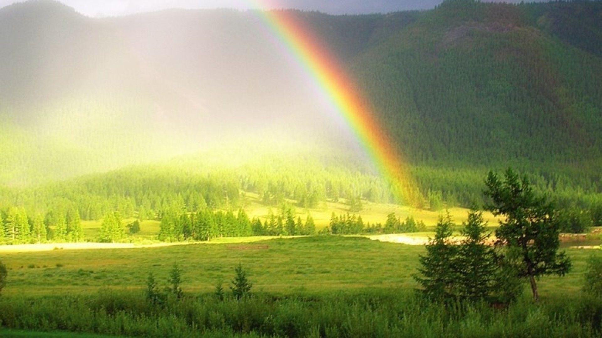 Картинки по запросу радуга и дождь | Природа, Пейзажи ...