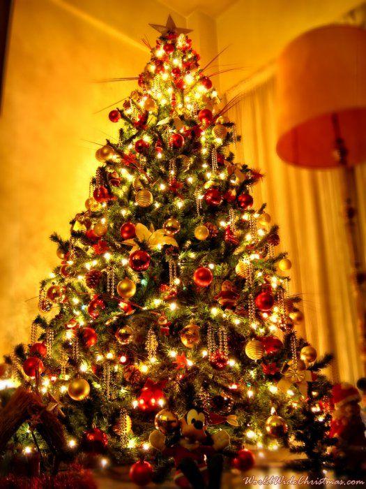 Sebastian (Buenos Aires, Argentina) | Christmas tree | Pinterest ...