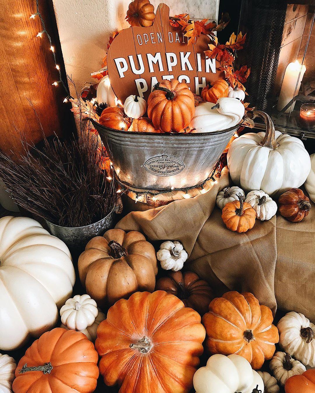 """A fall & winter collection on Instagram: """"Pumpkin patch.???? . . . . . . . . . . . . . . . . . #fallandwintercollection #joannfabrics #michaelscraftstore #hobbylobby #athomestores…"""" #pumpkinpatch"""