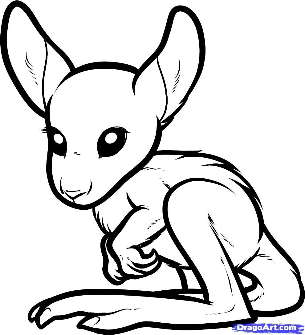 Free coloring pages kangaroo - How To Draw A Baby Kangaroo Baby Kangaroo Step 7