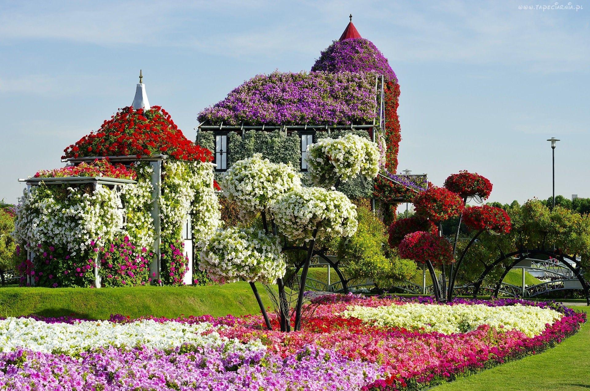 Ogrody Dubaju Wiosna Kwitnace Drzewa Ekspozycje Kwiatowe Most Beautiful Gardens Miracle Garden Dubai Garden