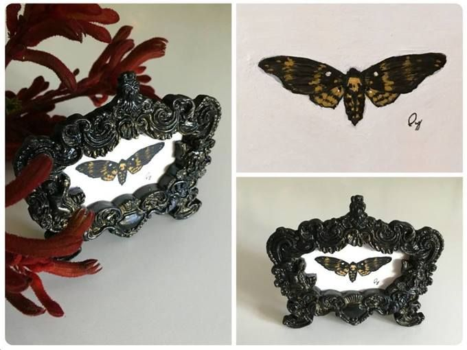 DeadHead Moth - Maggie Ivy
