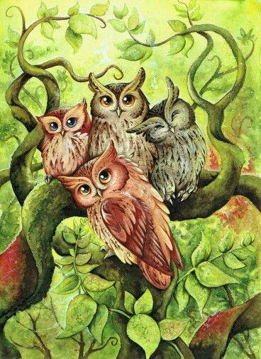 the owltastic four by kiri okami owls birds of prey pinterest