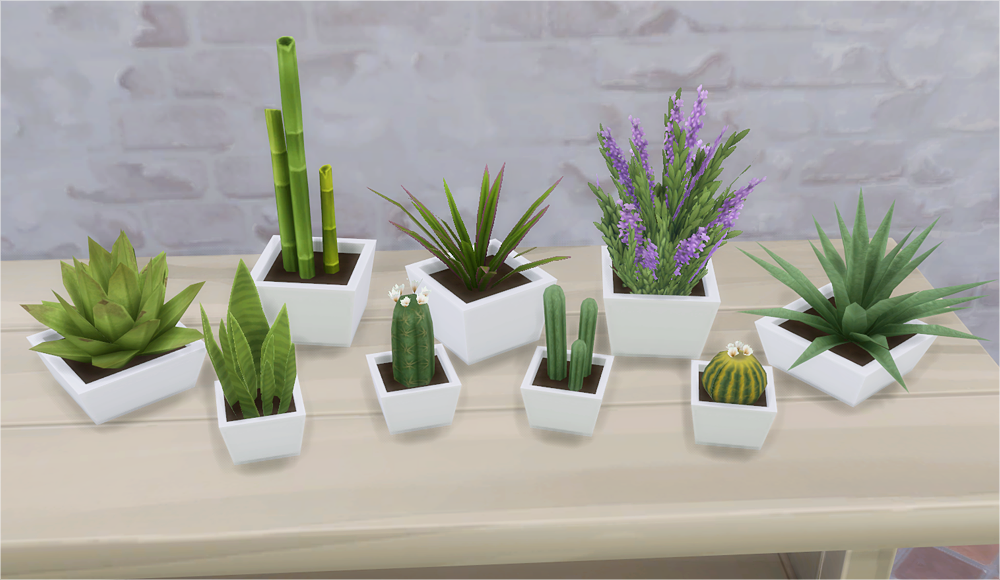[X] Sims 4 CC's Downloads Annett85 Annett's Sims 4 Welt #cactusplant