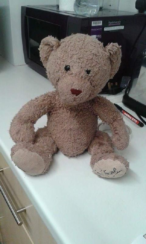 Lost On 01 Feb 2016 Columbia Road Area Grimsby Teddy Was Lost