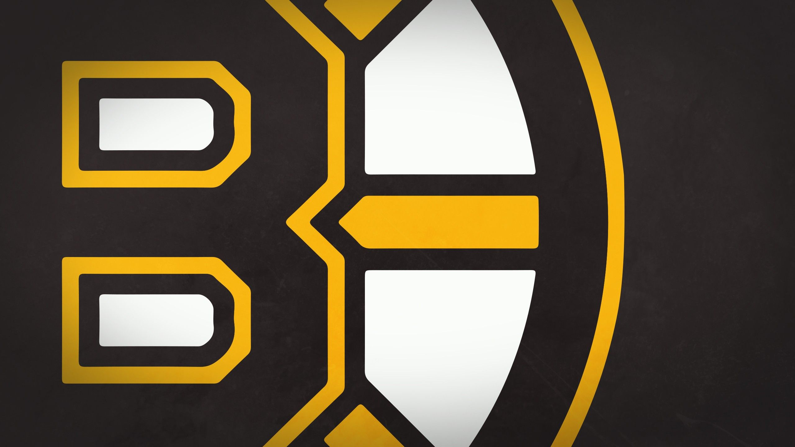 Boston Bruins 02.png
