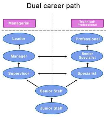 Career Development Writer Career Career Development Career Path