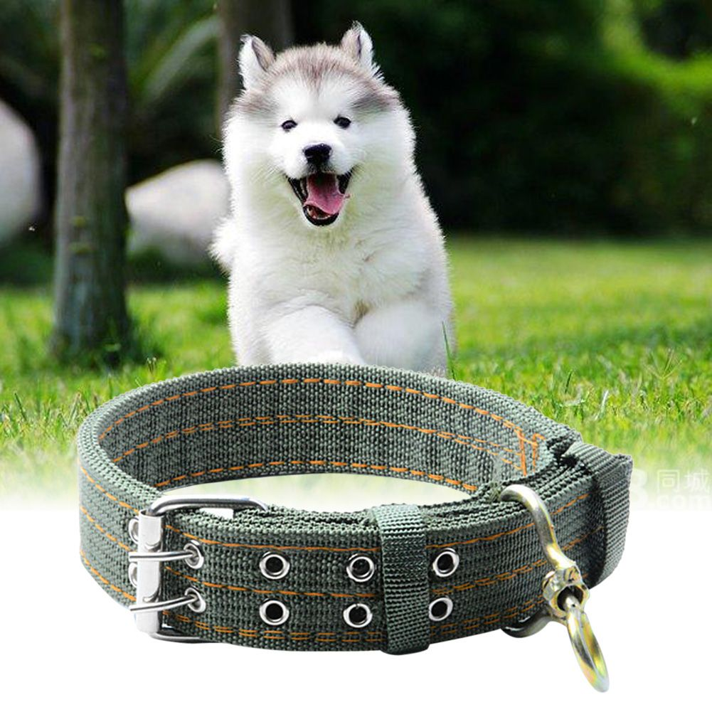 Army Green Canvas Pet's Collar | Dog Collar & Leash | Cat