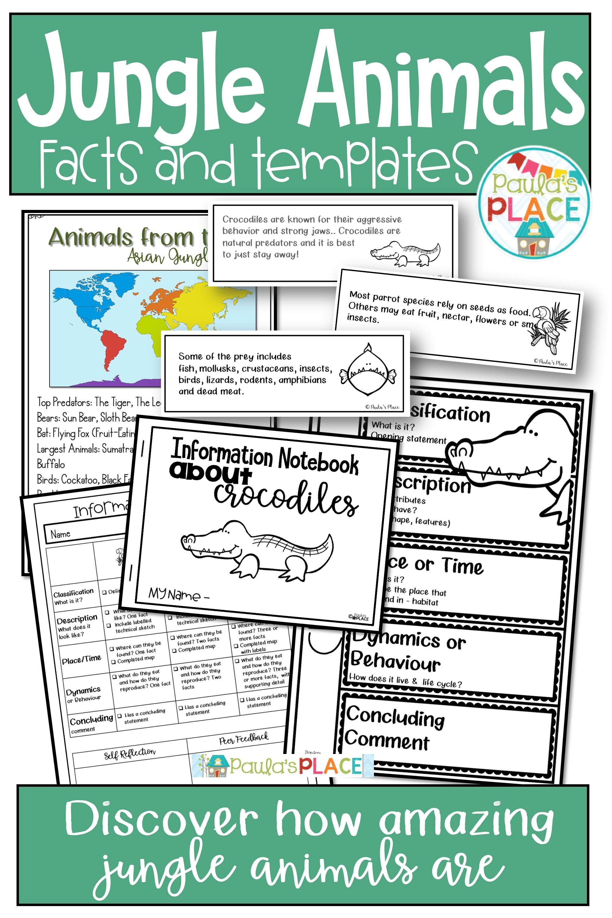 Jungle Animals Research Activities And Worksheets Reading Themes Jungle Animals Jungle Theme Activities