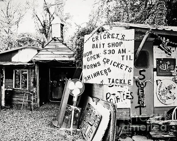 Crickets Bait Shop Photograph | Love     in black & white