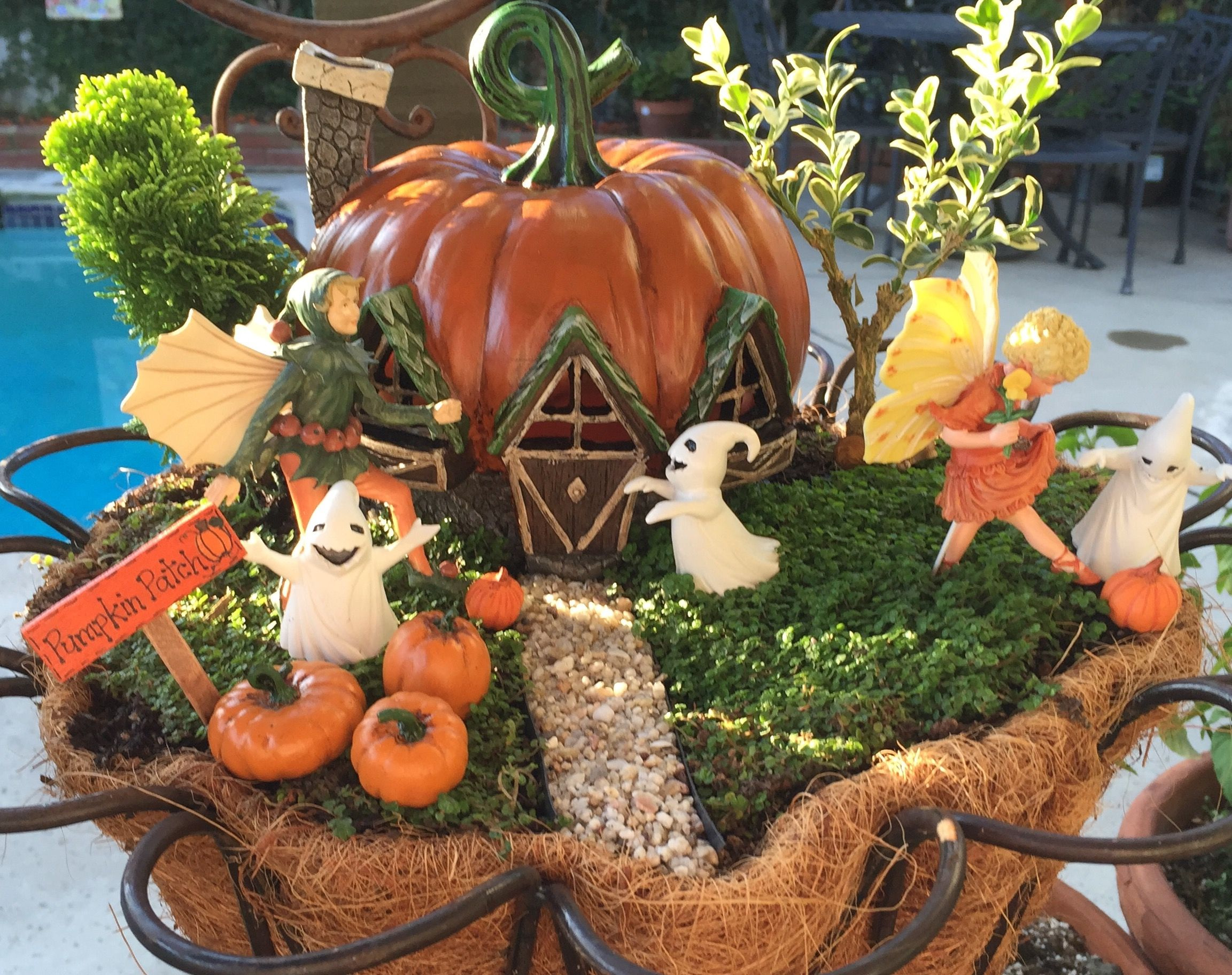 Miniature Fairy Garden - KICKIN\' IT AT THE PATCH is about two young ...