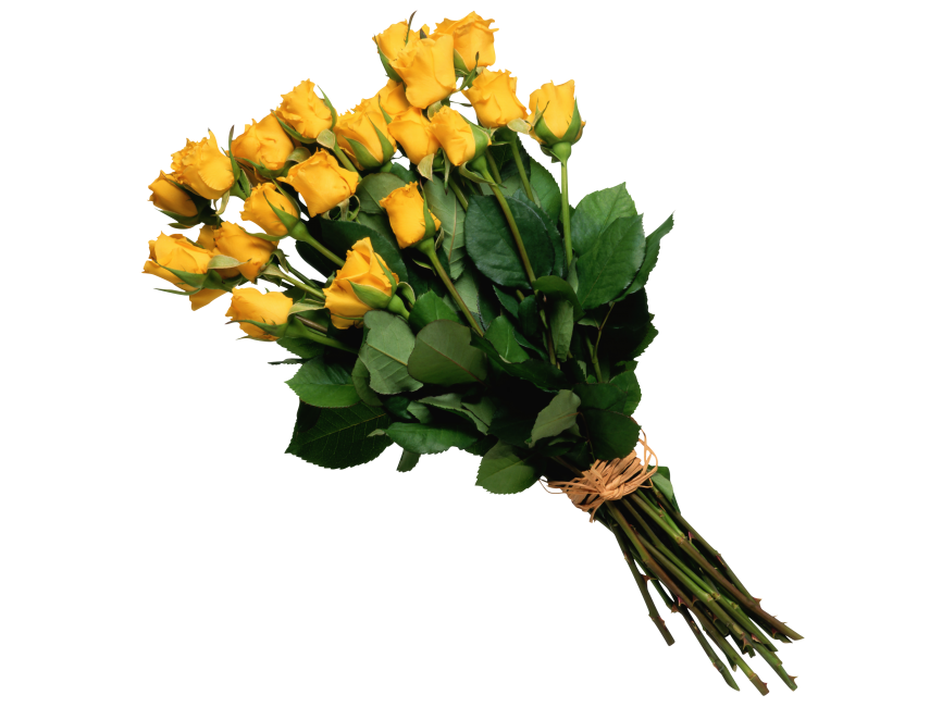 Yellow Rose Bouquet transparent image. Download free