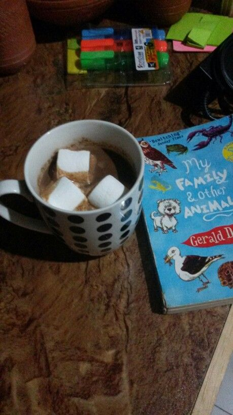 What's better than hot chocolate & marshmallows. .?
