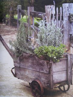 Vintage Garden Cart   Growing Herbs   Great Post Shows How Herbs Are  Planted And Displayed
