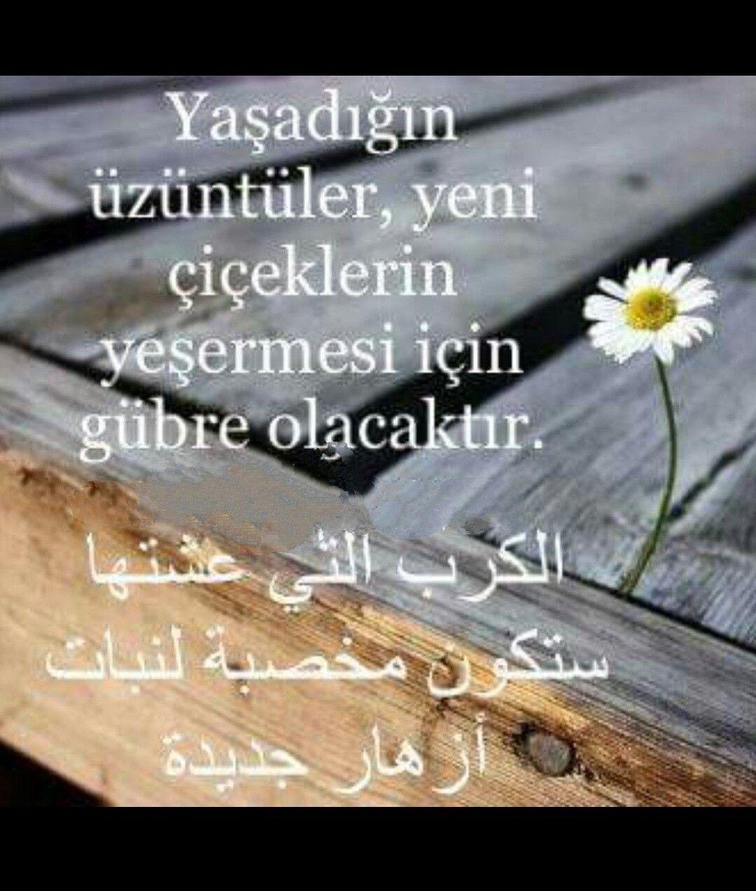 Arapça güzel #sözler..   Turkish language, Language, Quotes