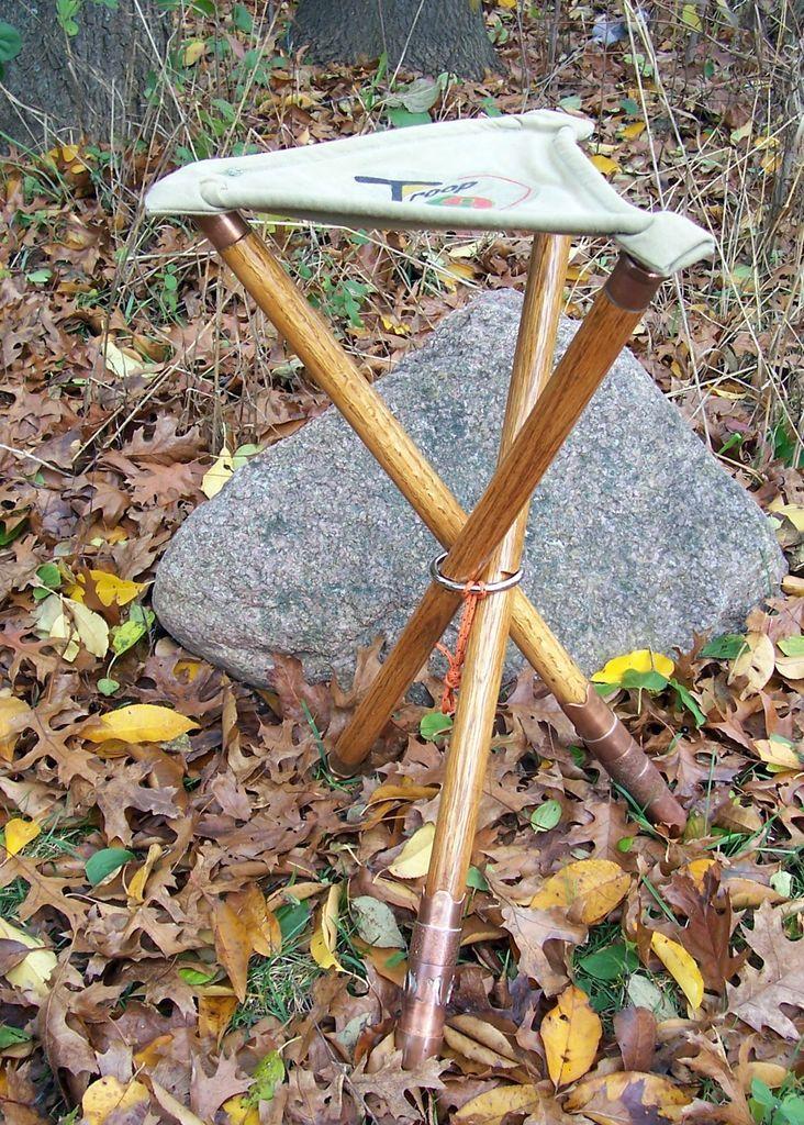 Multi Function Walking Stick