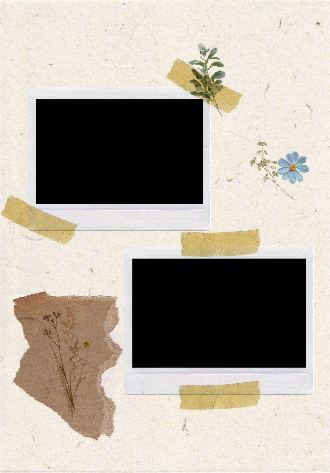 Wallpaper Bingkai Foto