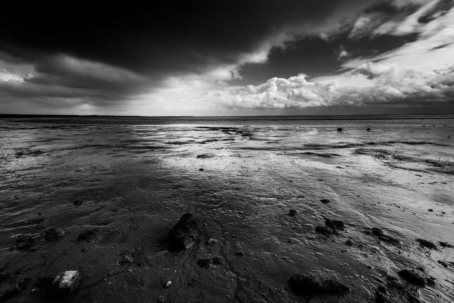Ballumerbocht, Ameland in Schwarz und Weiß von Martien Hoogebeen Fotografie auf Leinwand, Tapete und mehr