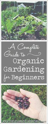Gardening Tips For Autumn Uk except Gardening Tips For Bell Peppers his Gardenin Gardening Tips For Autumn Uk except Gardening Tips For Bell Peppers his Gardenin