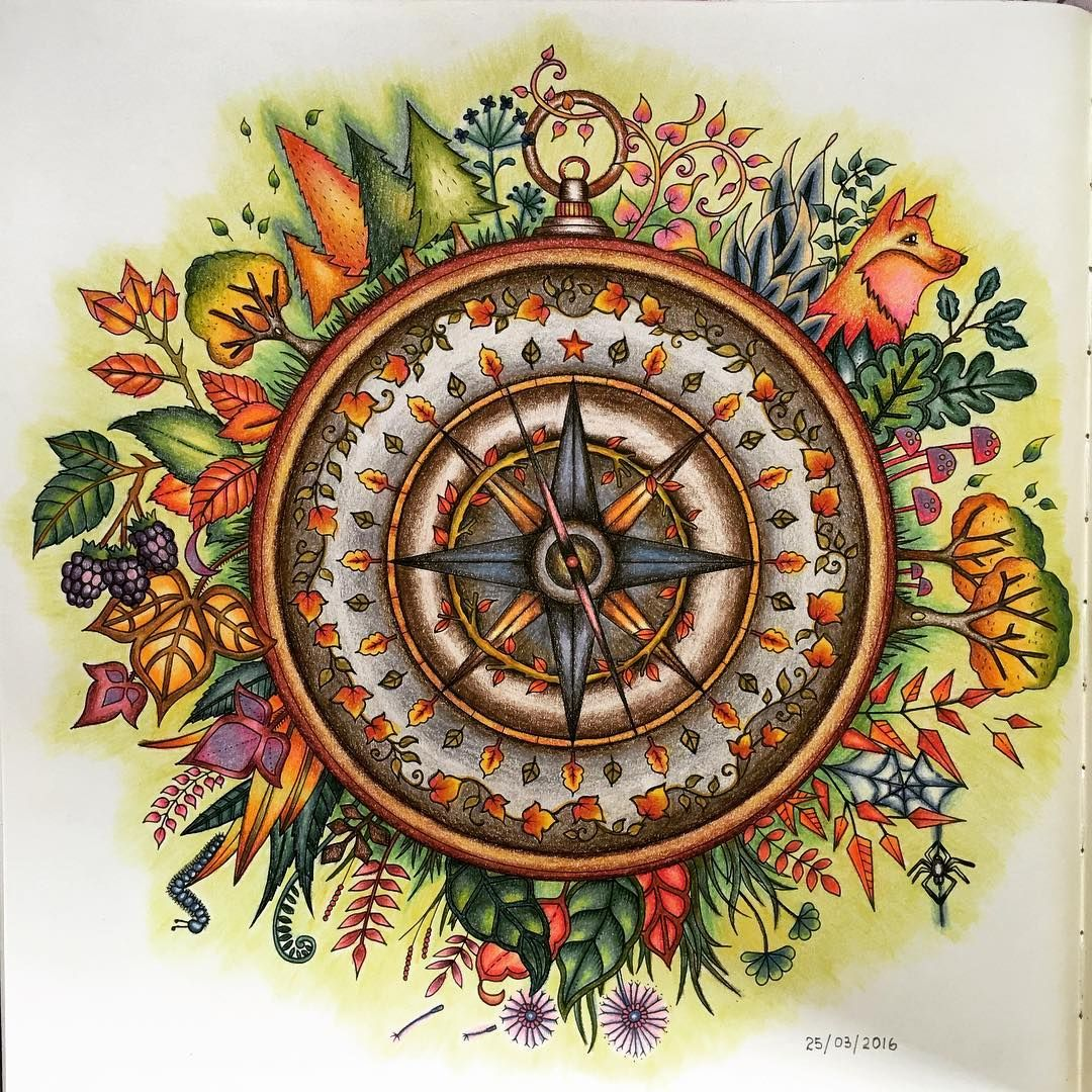 Start My Journey With A Compass Johannabasford Enchantedforest Coloringbook