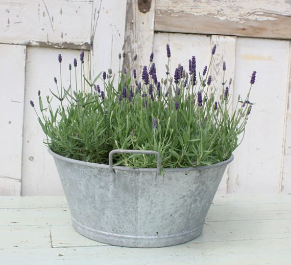 Zinc Garden Planter Vintage French Country Cottage Country Cottage Garden Cottage Garden Garden Planters