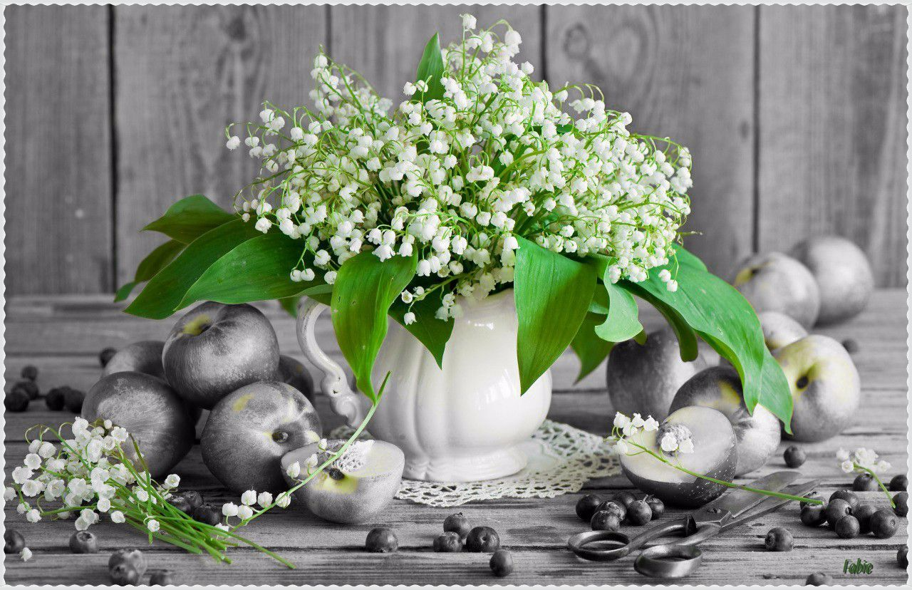 Pin by melissa steed on beautiful black white with a little color explore valley flowers flowers nature and more izmirmasajfo