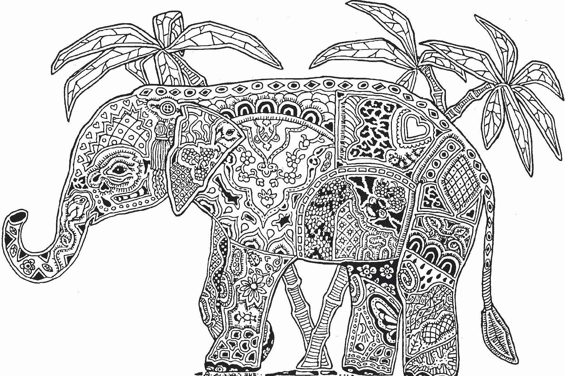 Inspirational Giraffe And Elephant Coloring Pages