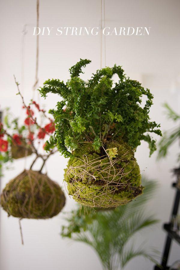 diy string garden pflanzen gr ne wohnzimmer und. Black Bedroom Furniture Sets. Home Design Ideas