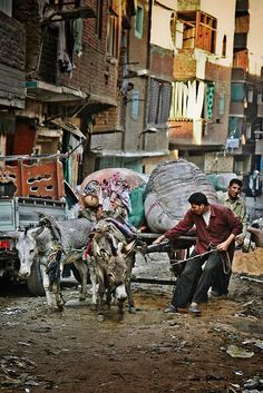 Garbage City A Slum In Cairo Been There Many Times With Images Life In Egypt Egypt Cairo Egypt