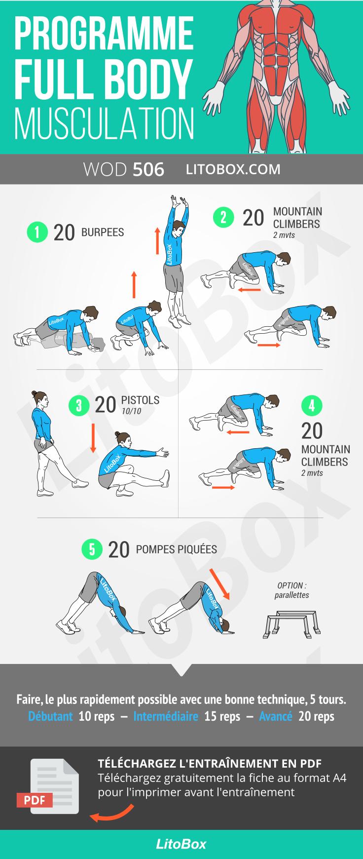 musculation corps complet
