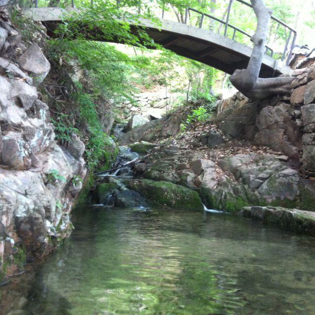 핀을 설명해 주세요...stream beside the  temple