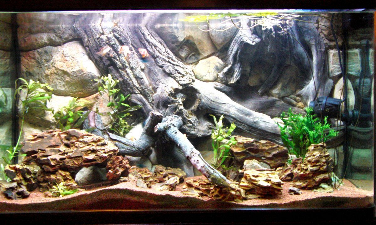 Aquarium background for fish tank size 48x25 see video for Aquarium background decoration