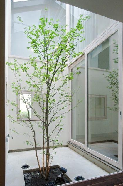Casa japonesa utiliza janelas e átrio para aproveitar sol durante todo o ano - Casa e Decoração - UOL Mulher