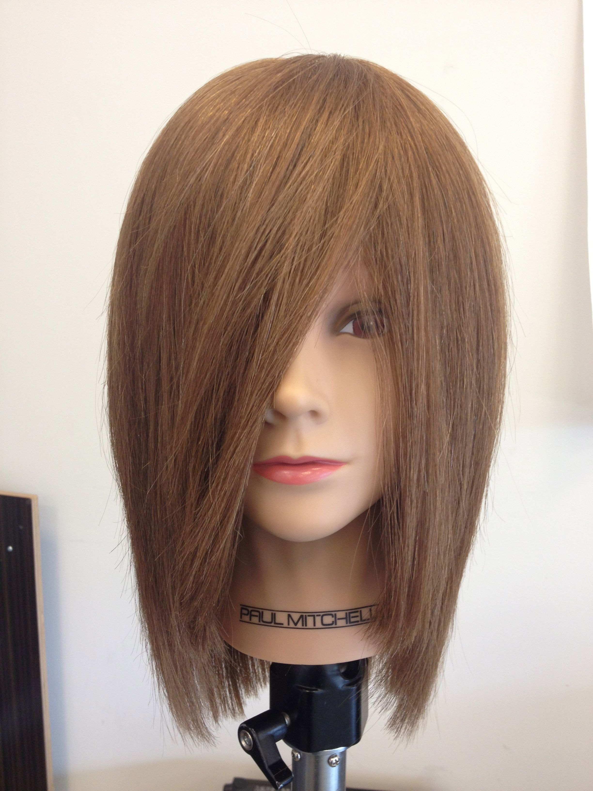 First Layered Haircut At Pmts Overland Park My Evolution At Paul