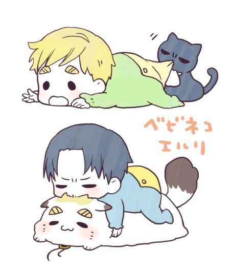 Erwin X Livaï Neko et akachan ❤ Levi's so mean to Erwin  My