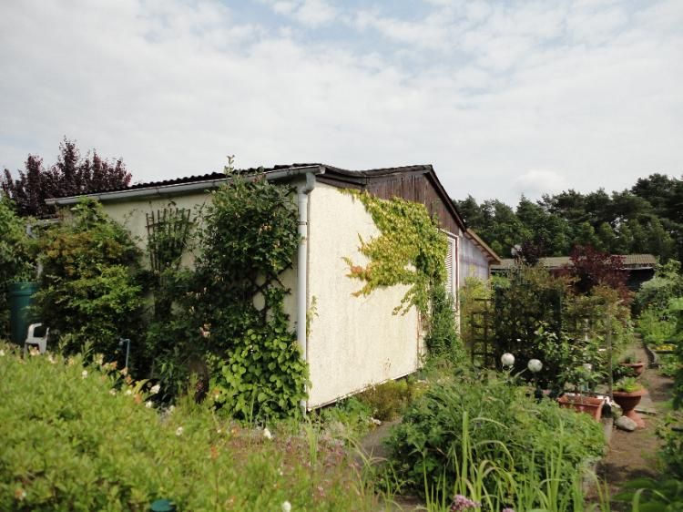 Biete Gepflegten Kleingarten In Neu Pampow Kieferneck E V Kleiner Garten Garten Gartenhaus