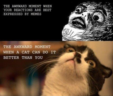 Awkward faktisk