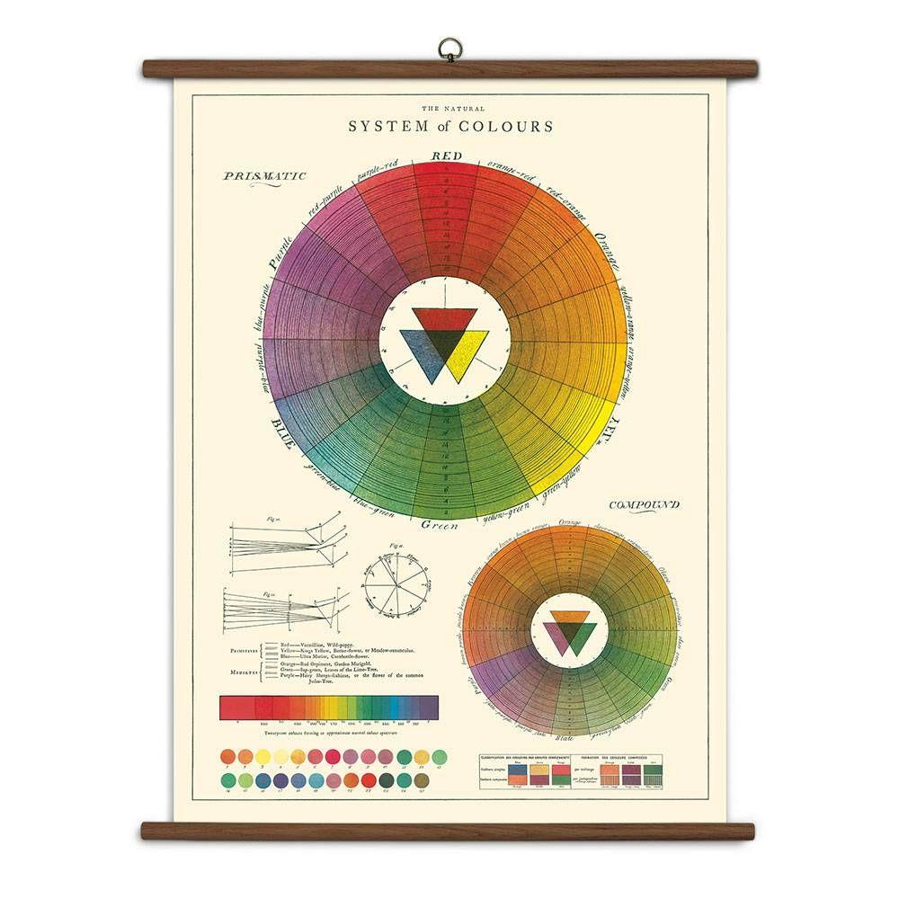 Color Wheel Vintage School Chart Gifts Pinterest Vintage