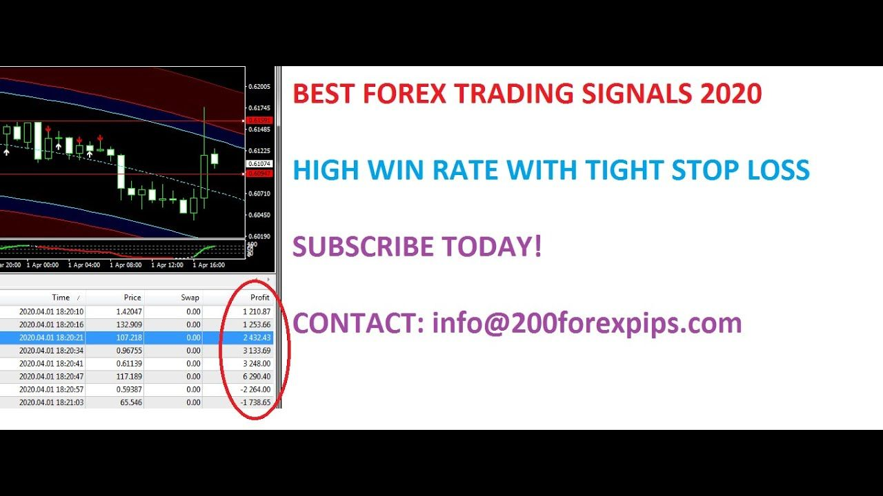 Forex & Gold Forecast with Market Analysis