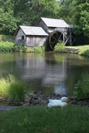 Mabry Mill, along the Blue Ridge Parkway: Water Wheel, Grist Mill, Appalachian Exhibits