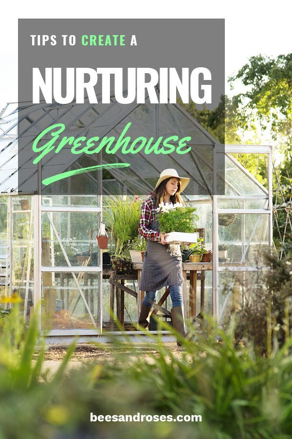 Greenhouse Gardening For Beginners Seed Starting Green Houses