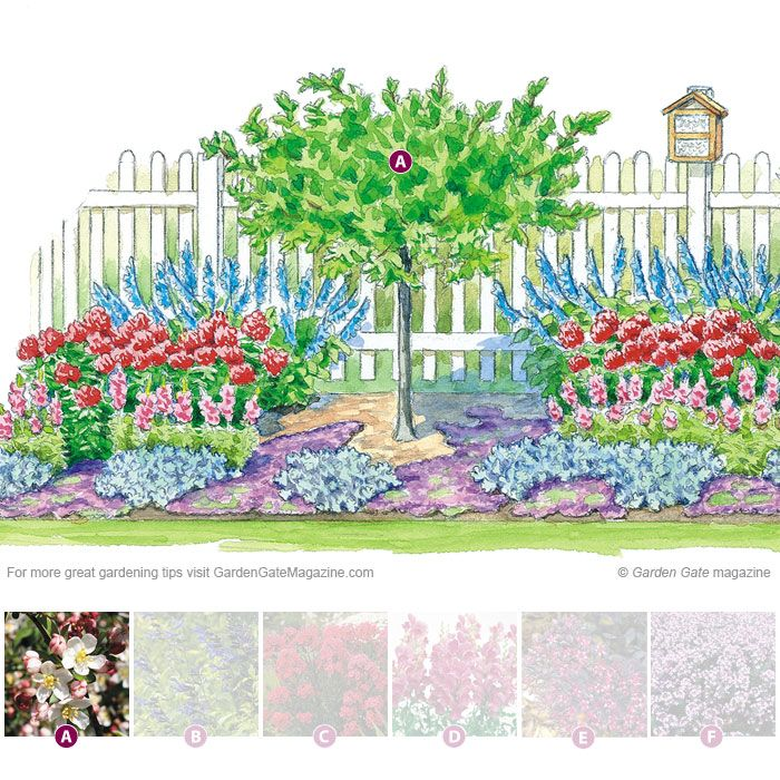 This low-maintenance planting plan is filled with blooms for bees, butterflies and hummingbirds.