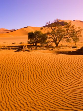 Sossusvlei, Namibia: Do the hike up the dune, the view from the top is amazing!