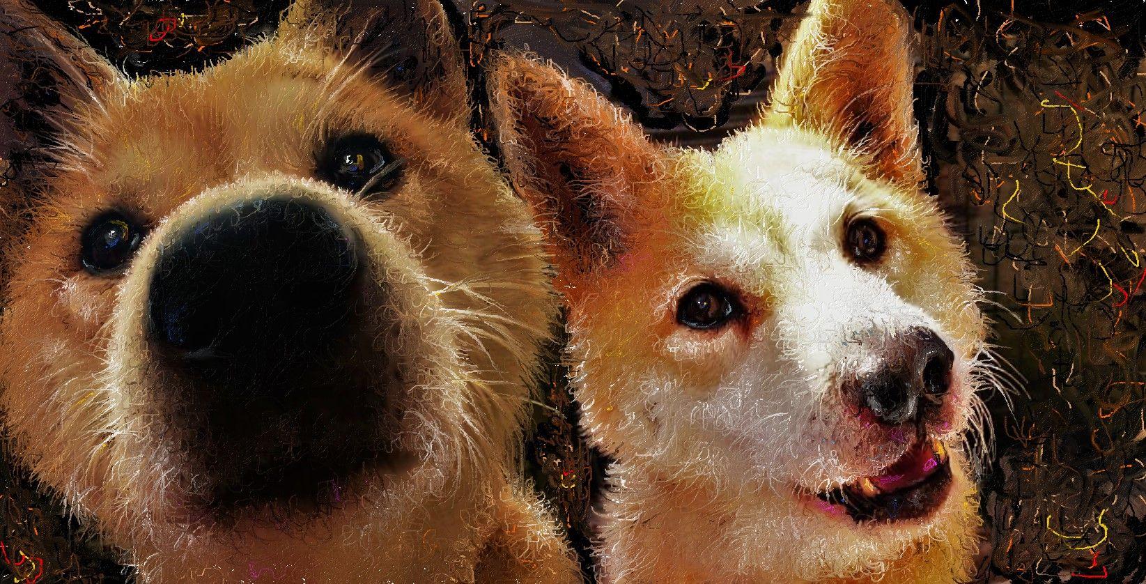 柴犬 # イラスト # 犬 # YouTube...