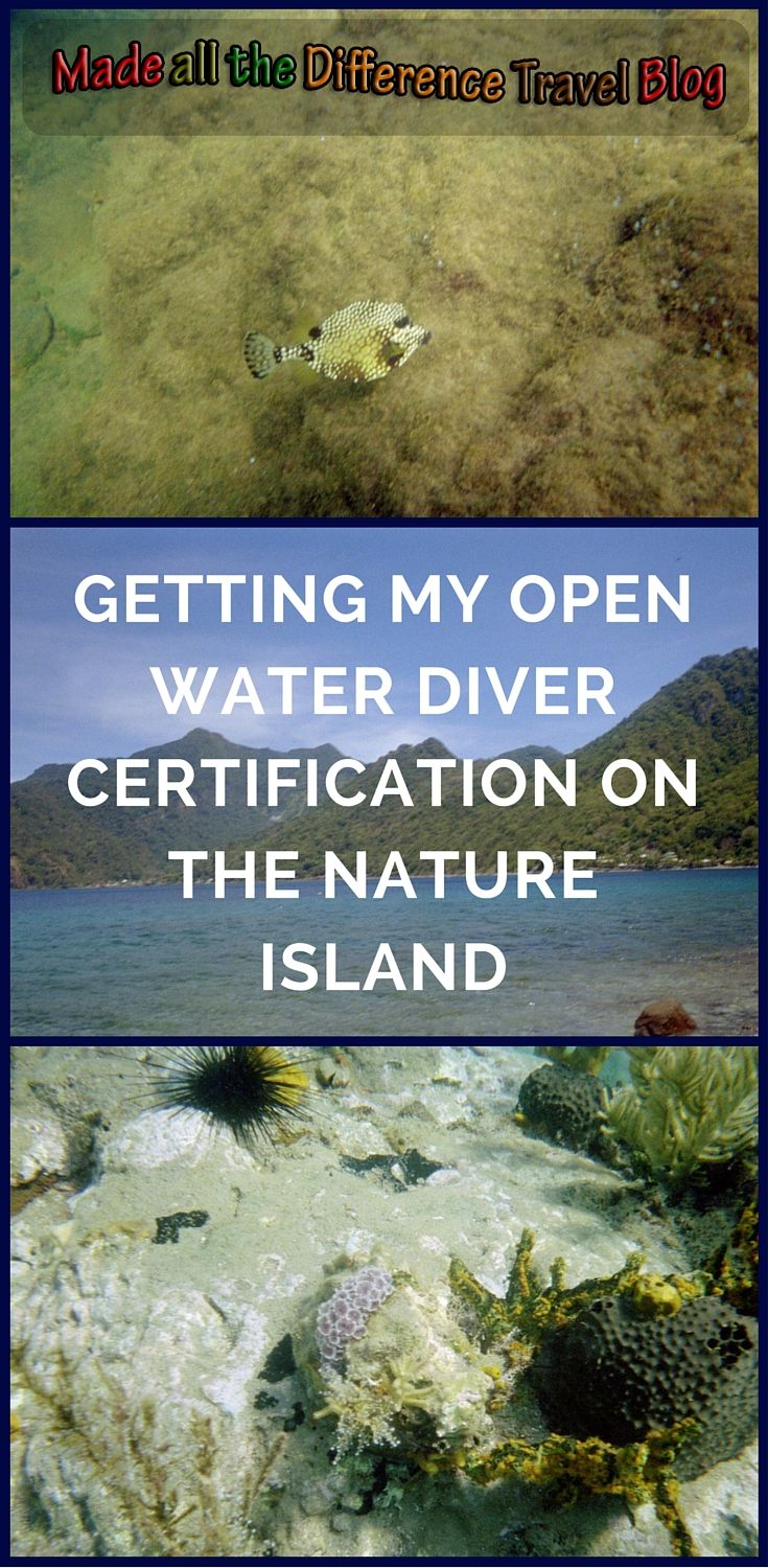 Getting My Open Water Diver Certification On Domincia The Nature